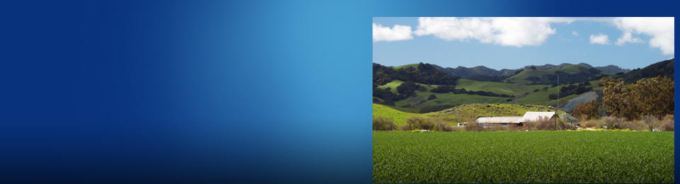 san donate properties real estate ladera ranch real estate canada